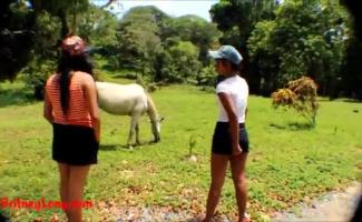 Vídeo De Pornô Cavalo Comendo