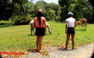Zoofilia Cavalo E Mulher