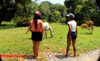 Prostituta Transando Com Cavalo