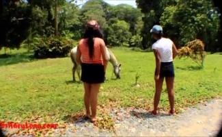 Cavalo Comendo O Cu Da Mulher