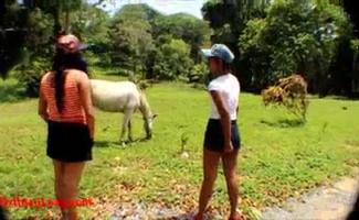 Cavalo Com Mulher Transando
