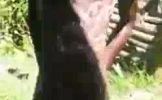 Twink Adolescente Haitiano Ao Lado POV