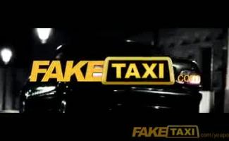 Motorista De Táxi Monta Galo No Banco De Trás