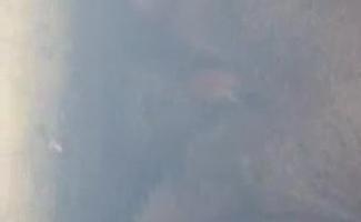 Mulher Loira Madura é Uma Prostituta Real, Já Que Ela Desceu E Suja Com Dois Caras Negros