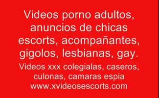 Xxx Vídeos Com Animais
