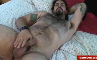 Masha And Bear Porn